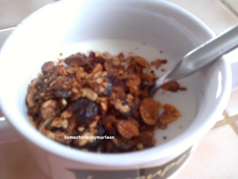 Yogurt met granola 1